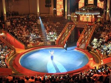 Цирк на проспекте Вернадского Представления